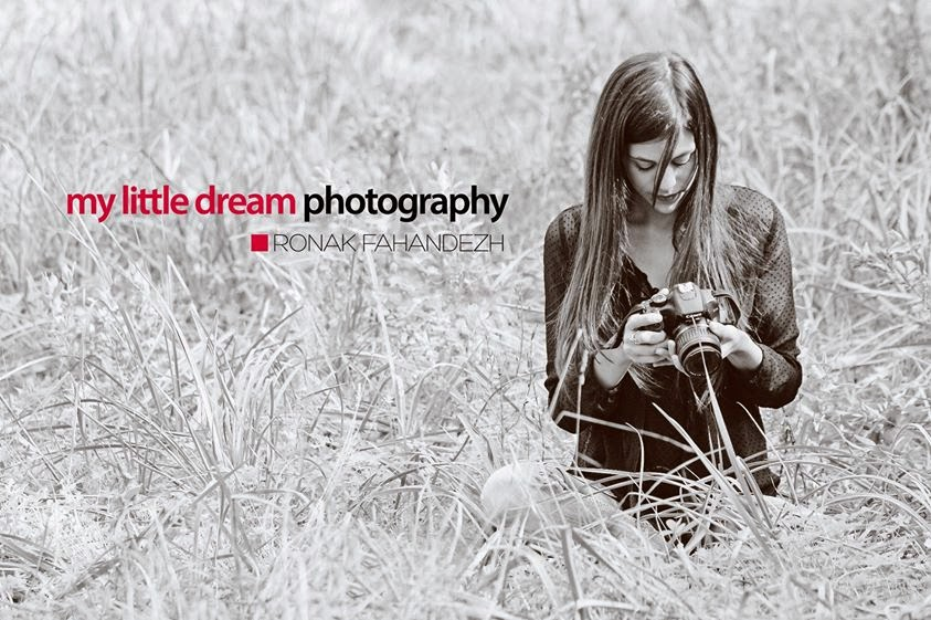 my little dream photography