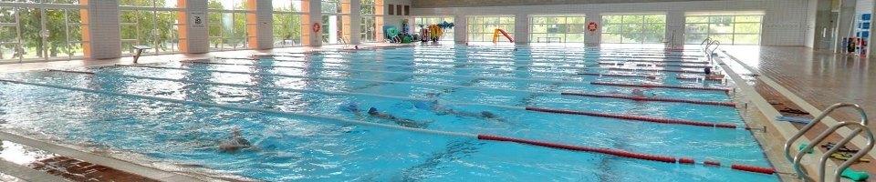 piscina campuesport uib